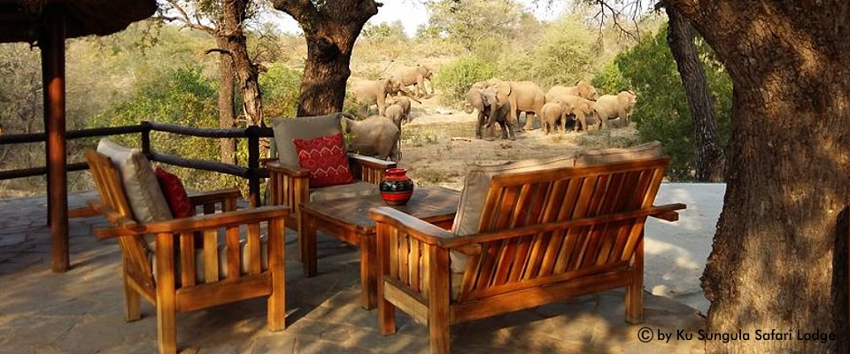 krugerpark-lodge-africa-adventure.jpg