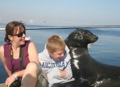 Laramon Tours bei den Pelican Point Robben in Walvis Bay