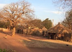 Savannah Southern Safaris kulturelle Tour in Livingstone