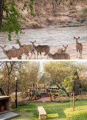 Tierbeobachtungsdeck bei Woodlands Stop Over in Francistown