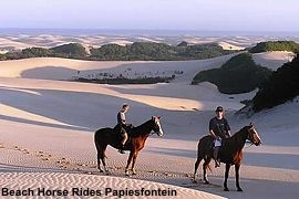 Beach Horse Rides Papiesfontein in Jeffreys Bay